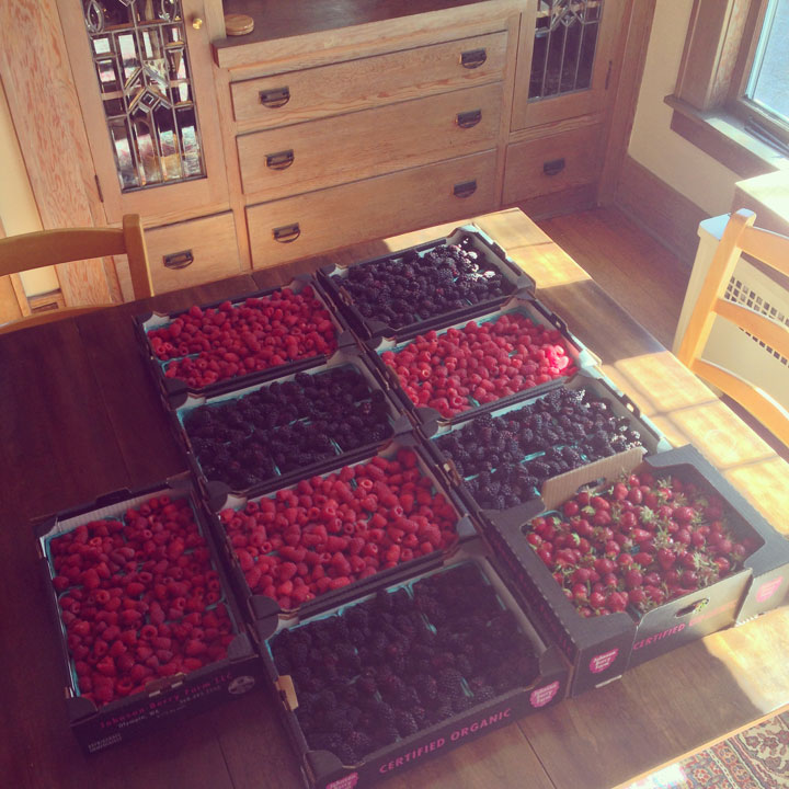 Berries photo by Chandler O'Leary