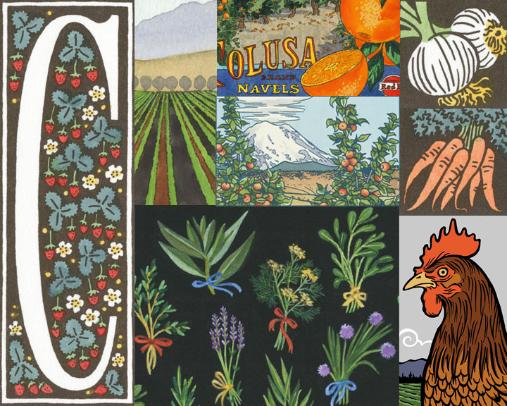 Collage of farm illustrations by Chandler O'Leary