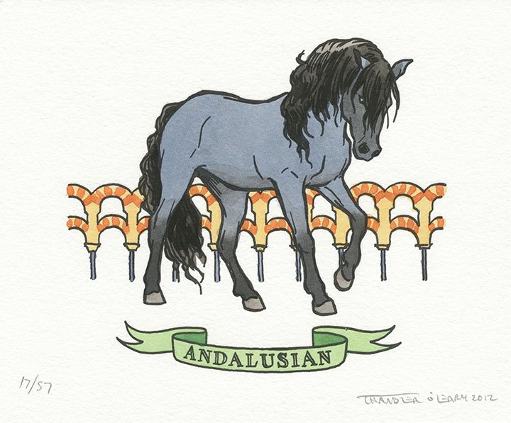 Andalusian horse illustrated and letterpress printed by Chandler O'Leary