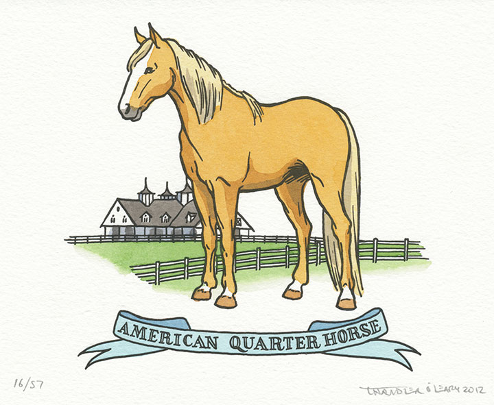 Quarter horse illustrated and letterpress printed by Chandler O'Leary
