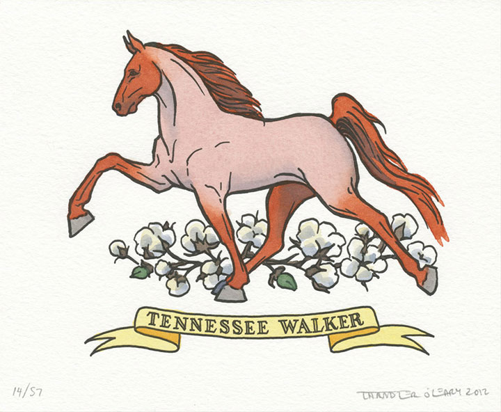 Tennesee walking horse illustrated and letterpress printed by Chandler O'Leary