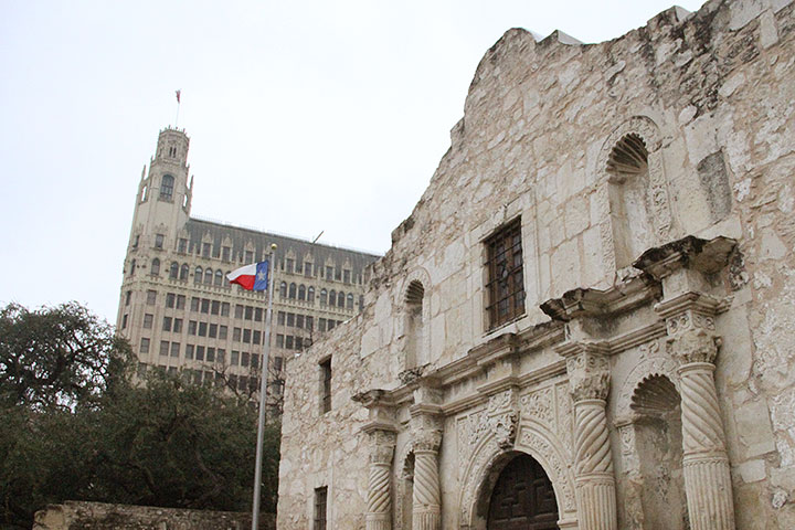 Alamo photo by Chandler O'Leary