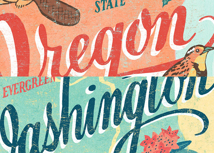 Teaser of 50 States series illustrations by Chandler O'Leary