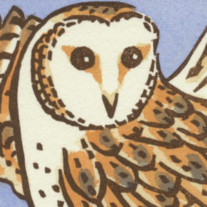 Detail of Barn Owl card by Chandler O'Leary