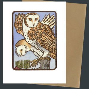 Barn Owl card by Chandler O'Leary
