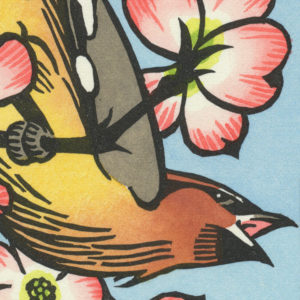 Detail of Cedar Waxwing card by Chandler O'Leary