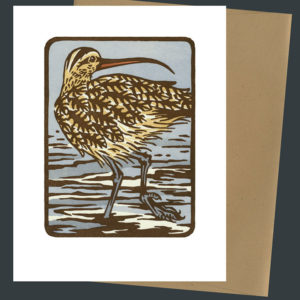 Long-billed Curlew card by Chandler O'Leary