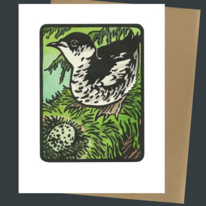 Marbled Murrelet card by Chandler O'Leary