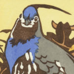 Detail of Mountain Quail card by Chandler O'Leary