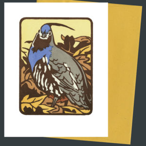 Mountain Quail card by Chandler O'Leary