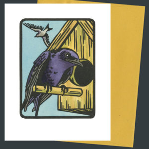 Purple Martin card by Chandler O'Leary