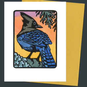 Steller's Jay card by Chandler O'Leary
