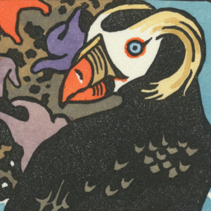 Detail of Tufted Puffin card by Chandler O'Leary