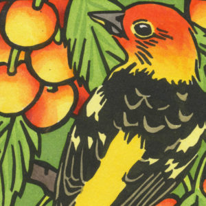Detail of Western Tanager card by Chandler O'Leary