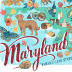 Detail of Maryland illustration by Chandler O'Leary