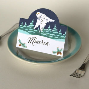 Winter Owl pop-up place cards by Chandler O'Leary